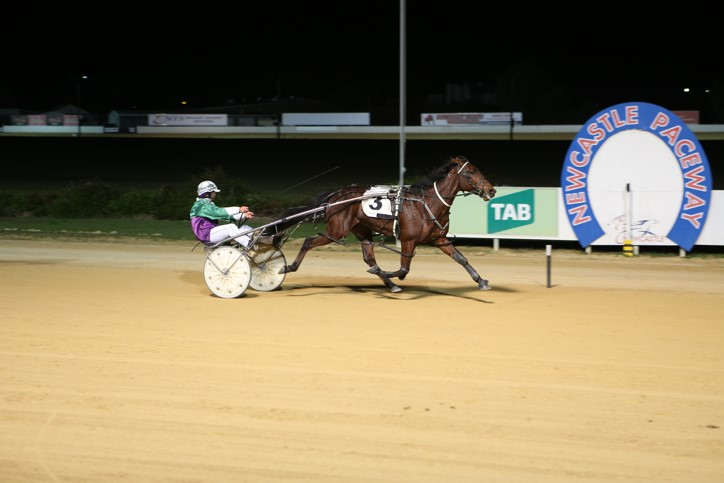 Jason Proctor guides Jay Kay A Flyin home to make it a marvellous four wins for the night for the Hunter Valley ace