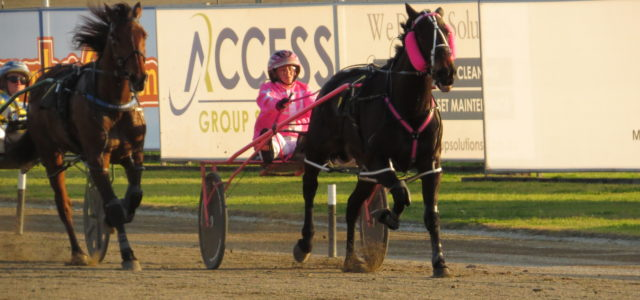 MENANGLE PREVIEW TONIGHT:Rona definitely needs  touch of luck: Tritton