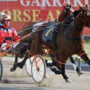 One favourite in 10 wins on Saturday at Menangle