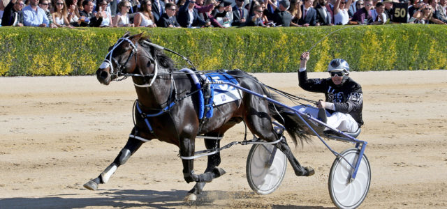 Pacing freak chasing a share of history