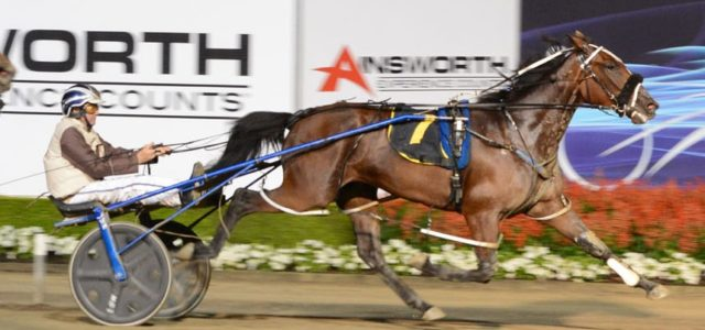 PREVIEW – MENANGLE JULY 25: PURDON STARS ON SHOW IN B.C. HEATS
