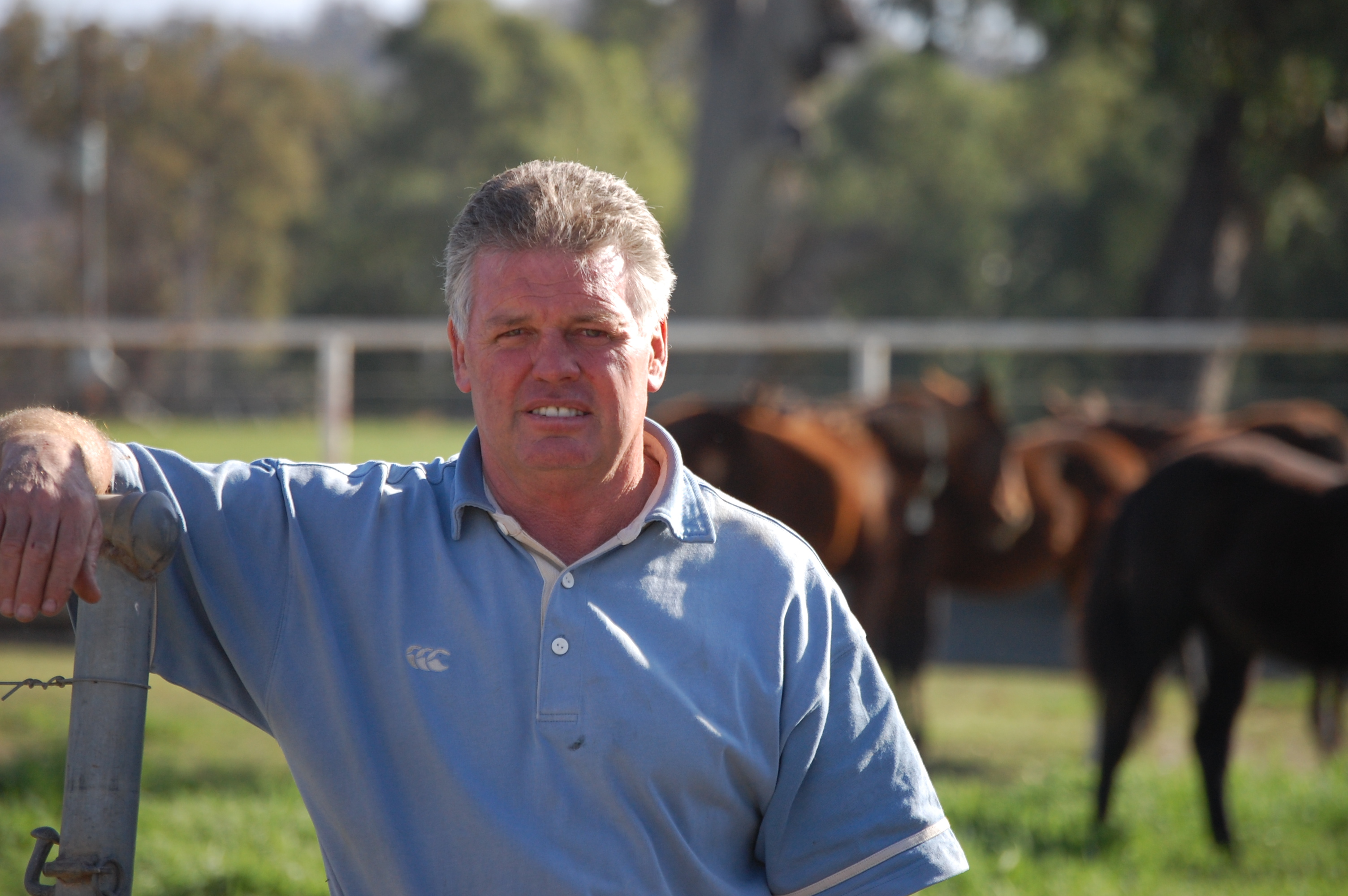 Leeton Preview July 31: DIEBERT'S OUT TO  KEEP RECORD UP