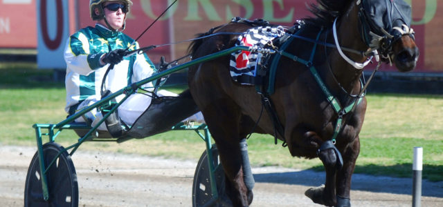 Preview: Menangle Tuesday August 29