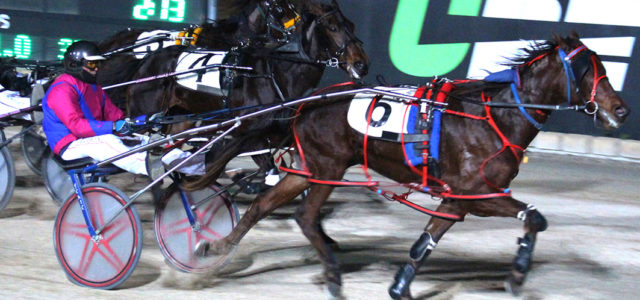 Bullet aimed at rich futurity
