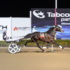 Aussies prominent in NZ Cup market