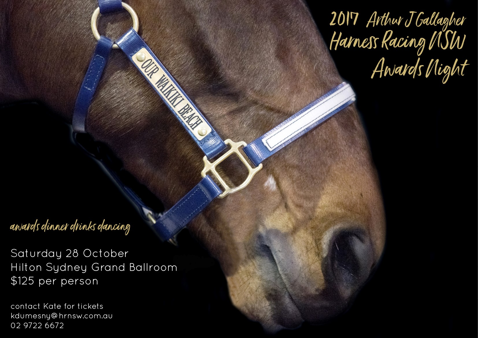 NSW Horse of the Year nominees