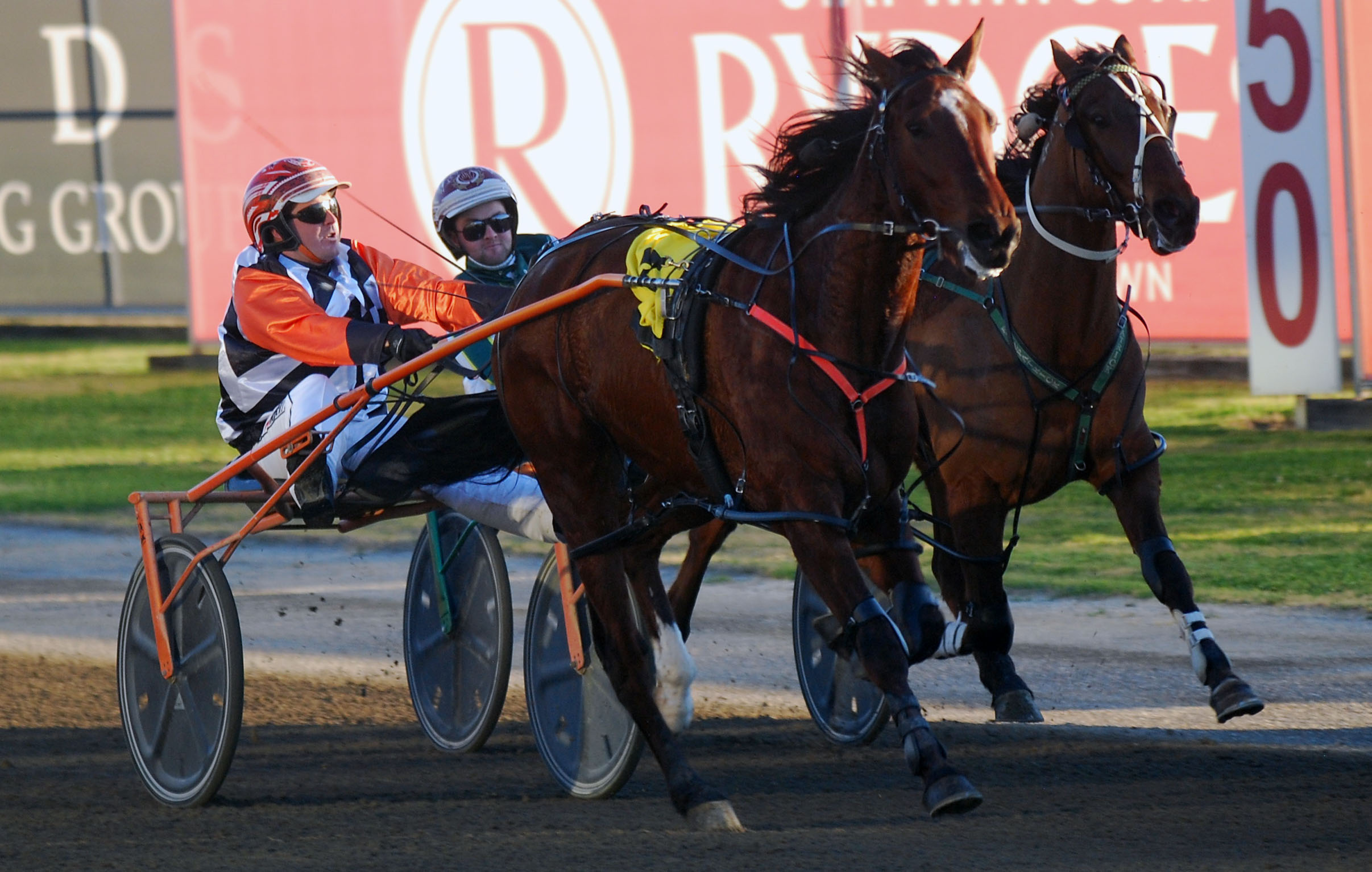 Preview: Menangle September 12