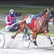 Manning provides hint ahead of Ladyship