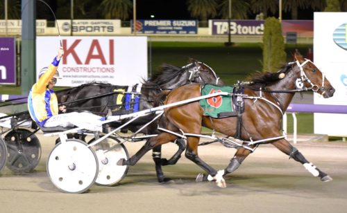 "Inter Dominion favourite ""very doubtful"""