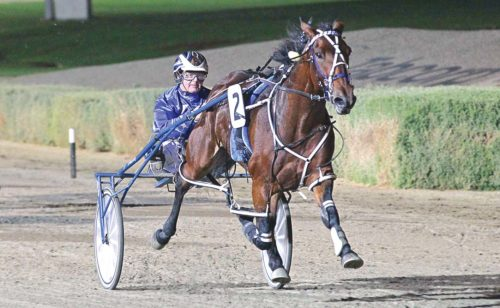Multiple Group One winner heading to NSW