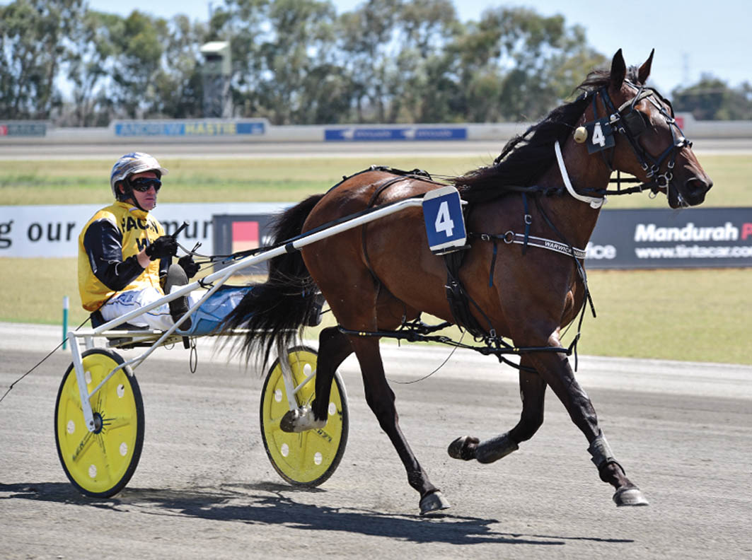 Warwick fillies complete perfect debuts