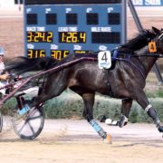 Trotters' Inter Dominion returning