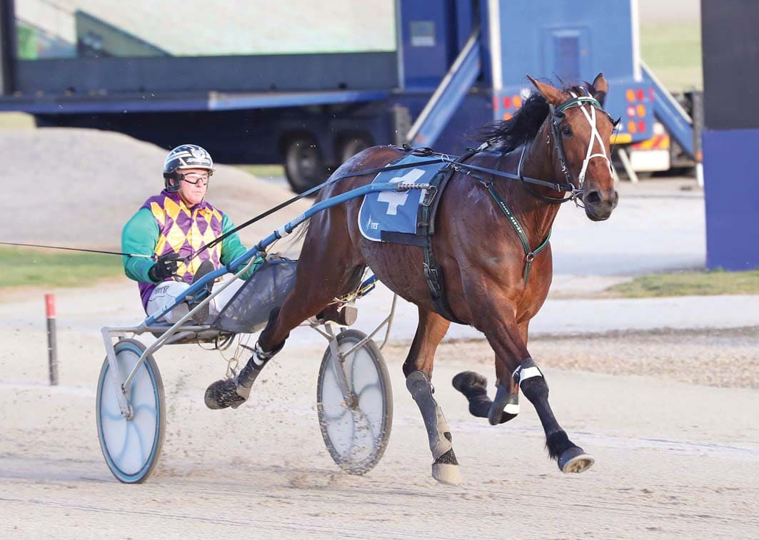 Top trotting mare to thrive around Menangle
