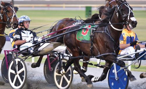 Inter Dominion winner switching barns