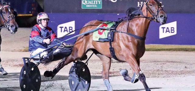Two state success for Victorian horseman