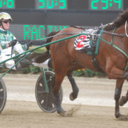 Menangle: Fitzy up for a hot trot