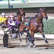 Unprecedented Vicbred assault
