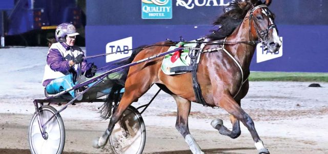 Pepperell ready for regal Group One debut