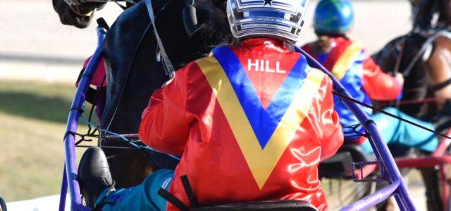 Hill – Australia's Queen of the sulky