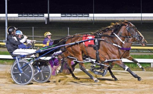 Tough test awaits talented filly