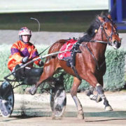 On target for Group One clean sweep
