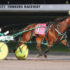 Dual Oaks winner continues to star in USA