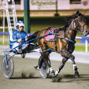Group One win shapes as perfect prescription