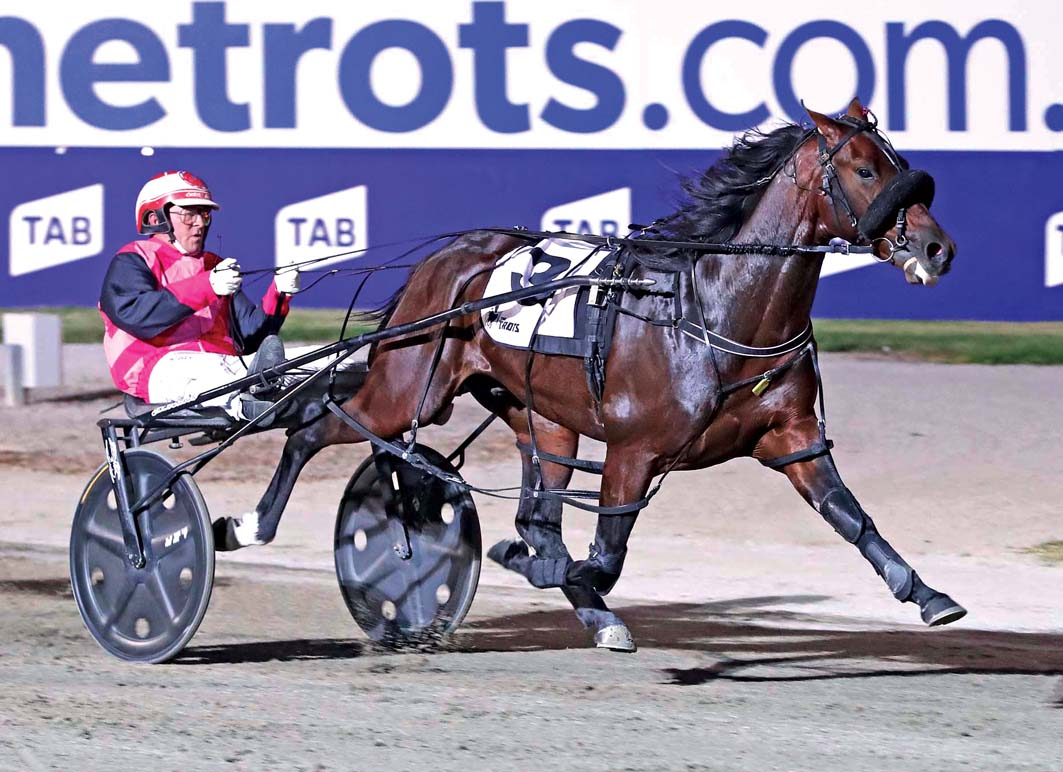Australian Pacing Gold heat domination