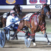 Talented filly to extend perfect season