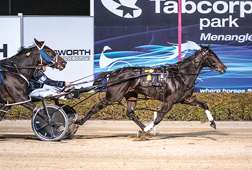 Filly primed to continue winning streak