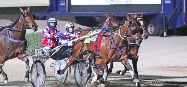 Ameretto shows why she's Australia's champion mare