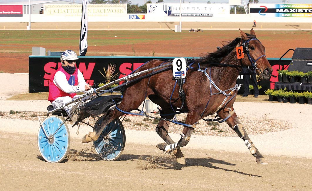 Siblings chasing feature glory