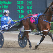 Drama for Purdon stable