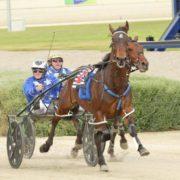 Croghan nabs another star Kiwi
