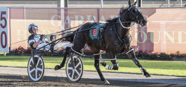 Pizzuto, Butt the men to follow at Menangle