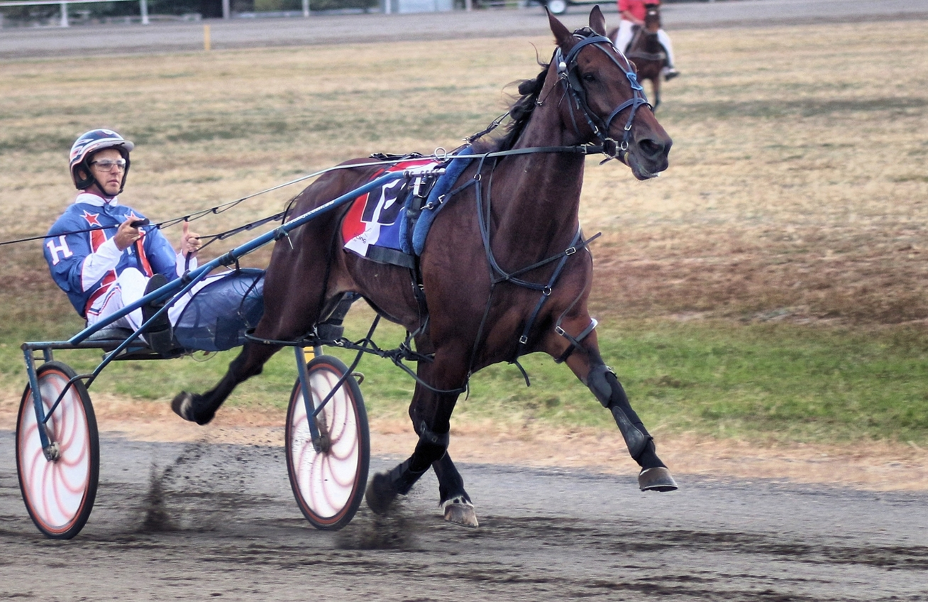 Hardings lose their stable star