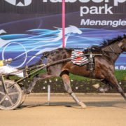 Failed pacer on target for second G1 trot win