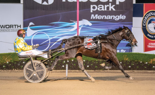 Bathurst a pathway to NZ Harness Jewels