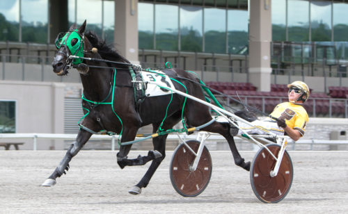 Former claimer equals track record