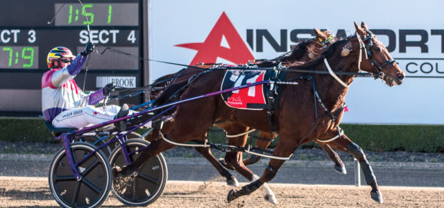 Exciting filly earns winter reprieve
