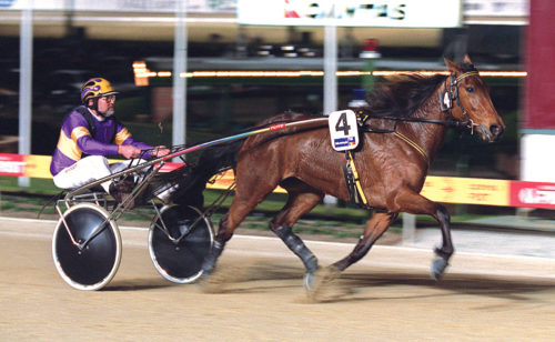"""Star trotting filly """"just about forgotten"""""""