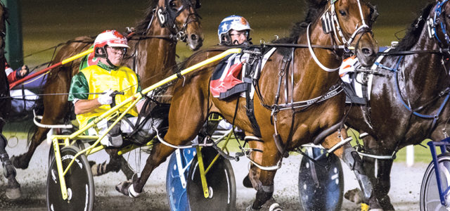 Visitors' draws for interstate raiders