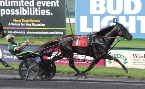 Champion bounces back to his best