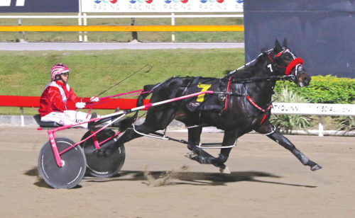 Muscle powers his way to Group One glory