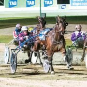 Ideal tune up for Victoria Derby heats
