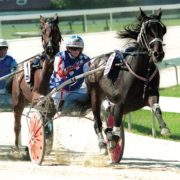 Trotter joins superstar dam on Group One honour roll
