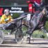 Purple patch for Inter Dominion champion
