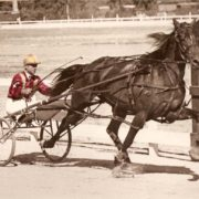 Former great honoured at Globe Derby