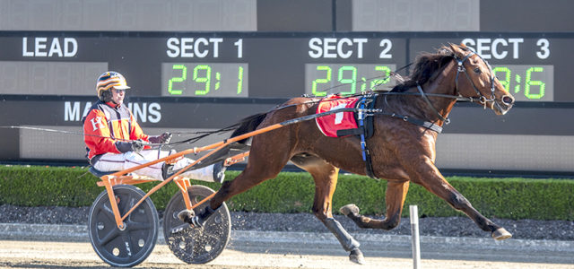 Time to test promising trotter