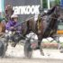 Odds-on to equal Inter Dominion record